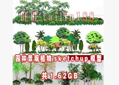 1.62G 园林植物sketchup草图大师模型打包下载