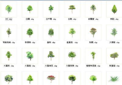 117个带中文名称的2D平面树草图大师下载