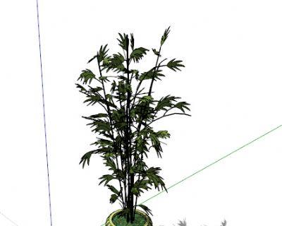 sketchup室内盆景植物模型52