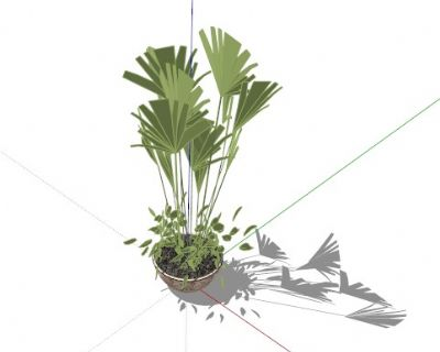 skp室内盆景植物模型212