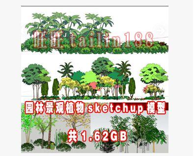1.62GB景观植物su模型下载