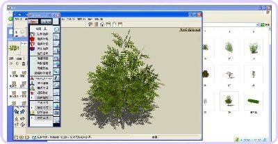 270MB草图大师植物模型库下载 SU灰晕 花草组件