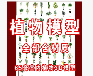 65套室内花草植物3D模型 盆景盆栽 3D室内树木模型 全模渲染图